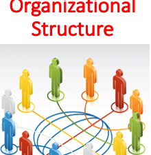 Designing Organizational Structure (Management)
