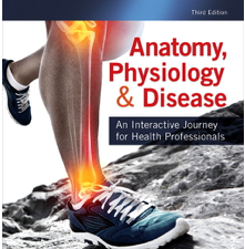 Test Bank for Anatomy Physiology & Disease An Interactive Journey for Health Professionals 3rd Edition