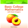 Solutions Manual for Basic College Mathematics with Early Integers 4th Edition by Elayn Martin-Gay