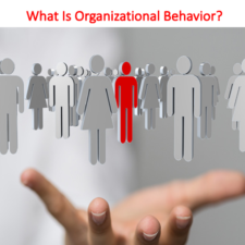 What Is Organizational Behavior Lecture