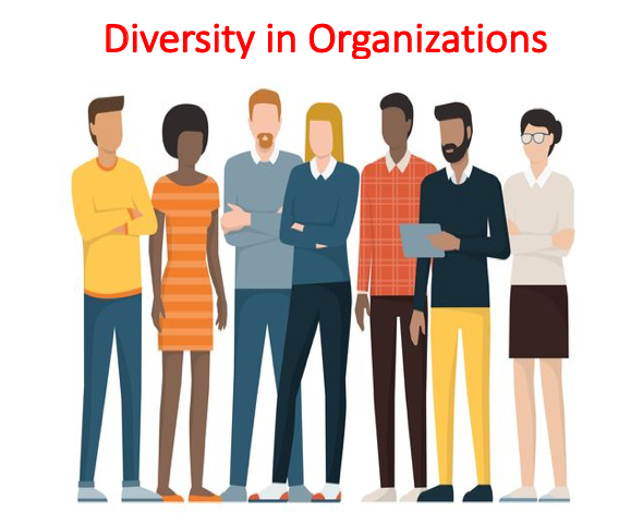 Diversity in Organizations Lecture