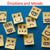 Emotions and Moods Lecture (Organizational Behavior)