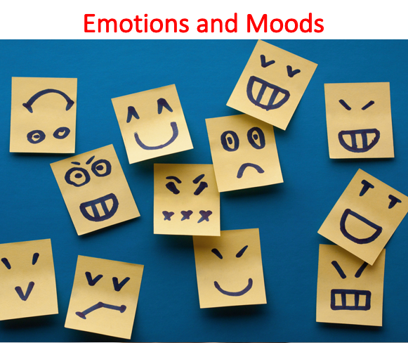 Emotions and Moods Lecture