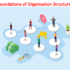 Foundations of Organization Structure Lecture (Organizational Behavior)