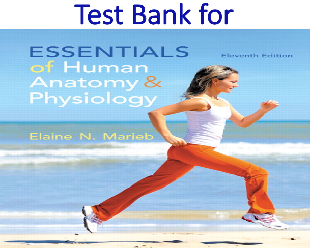 Test Bank for Essentials of Human Anatomy & Physiology 11th Edition