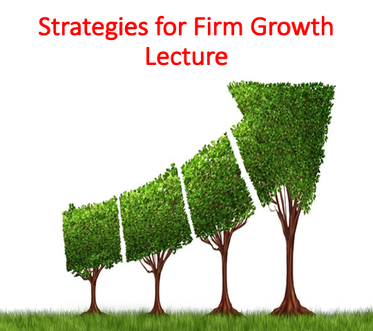 Strategies for Firm Growth Lecture